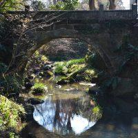 昇龍橋の写真